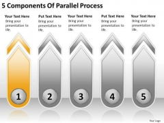 5 Components Of Parallel Process How To Write Business Plan Template PowerPoint Slides