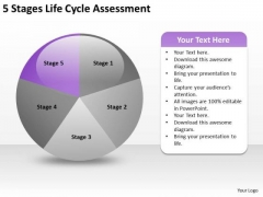5 Stages Life Cycle Assesment Business Plan PowerPoint Slides