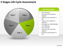 5 Stages Life Cycle Assesment Small Business Plan Samples PowerPoint Slides