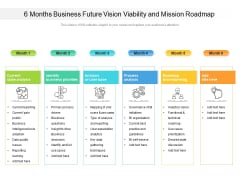 6 Months Business Future Vision Viability And Mission Roadmap Guidelines