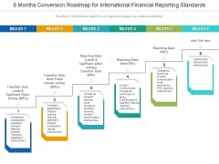 6 Months Conversion Roadmap For International Financial Reporting Standards Summary