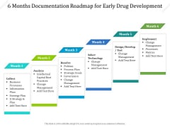 6 Months Documentation Roadmap For Early Drug Development Summary