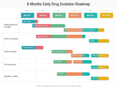 6 Months Early Drug Evolution Roadmap Formats