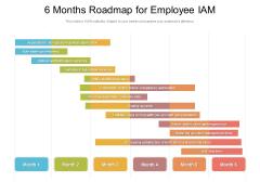 6 Months Roadmap For Employee IAM Information