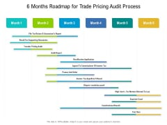 6 Months Roadmap For Trade Pricing Audit Process Portrait