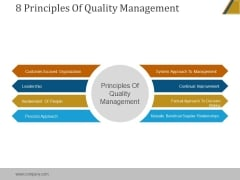 8 Principles Of Quality Management Ppt PowerPoint Presentation Example File