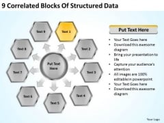 9 Correlated Blocks Of Structured Data Business Plan PowerPoint Templates