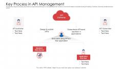 API Administration Solution Key Process In API Management Ppt Show Files PDF