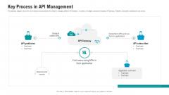 API Ecosystem Key Process In API Management Infographics PDF