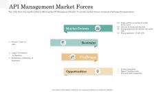 API Management Market API Management Market Forces Summary PDF