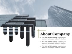 About Company Ppt PowerPoint Presentation Layouts