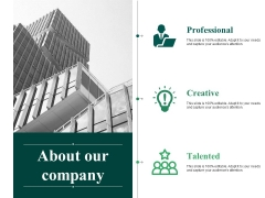 About Our Company Ppt PowerPoint Presentation Infographic Template Structure