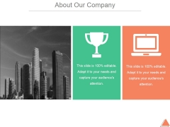 About Our Company Template 2 Ppt PowerPoint Presentation Files
