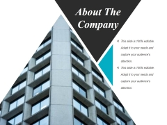 About The Company Ppt Powerpoint Presentation Model Inspiration