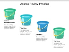 Access Review Process Ppt PowerPoint Presentation Show Graphic Images Cpb