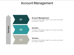Account Management Ppt PowerPoint Presentation Ideas Layouts Cpb