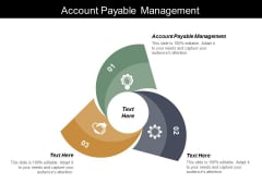 Account Payable Management Ppt PowerPoint Presentation Pictures Graphics
