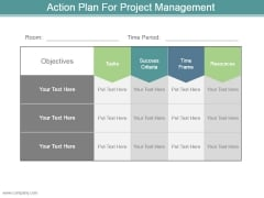 Action Plan For Project Management Example Of Ppt Presentation