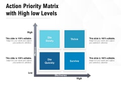 Action Priority Matrix With High Low Levels Ppt PowerPoint Presentation Portfolio Graphic Tips