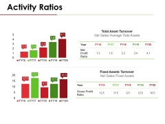 Activity Ratios Template 3 Ppt PowerPoint Presentation Inspiration Example File