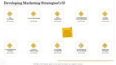 Administrative Regulation Developing Marketing Strategies Influencers Ppt PowerPoint Presentation Icon Grid PDF