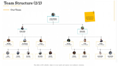 Administrative Regulation Team Structure Lead Ppt PowerPoint Presentation Icon Layout Ideas PDF