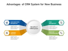 Advantages Of CRM System For New Business Ppt PowerPoint Presentation File Good PDF