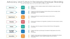 Advocacy And Culture In Developing Employer Branding Ppt Inspiration Themes PDF