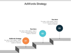 Adwords Strategy Ppt PowerPoint Presentation Pictures Outfit Cpb