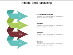 Affiliate Email Marketing Ppt PowerPoint Presentation Portfolio Introduction Cpb