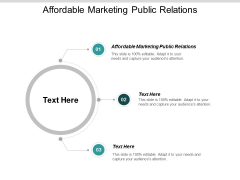 Affordable Marketing Public Relations Ppt PowerPoint Presentation Pictures Skills Cpb