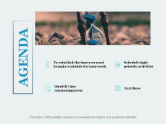 Agenda Identify Time Consuming Areas Ppt PowerPoint Presentation Rules