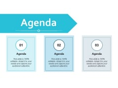 Agenda Marketing Strategy Ppt Powerpoint Presentation Icon Templates