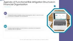 Agenda Of Functional Risk Mitigation Structure In Financial Organization Guidelines PDF