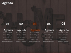 Agenda Ppt PowerPoint Presentation Gallery Examples