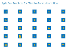 Agile Best Practices For Effective Team Icons Slide Ppt Show Demonstration PDF