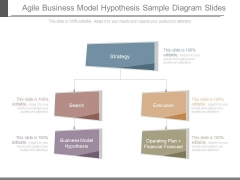 Agile Business Model Hypothesis Sample Diagram Slides