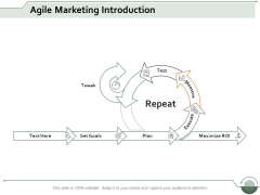 Agile Marketing Introduction Ppt Powerpoint Presentation Summary Graphics Pictures