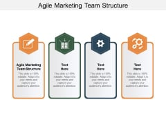 Agile Marketing Team Structure Ppt PowerPoint Presentation Professional Layouts Cpb