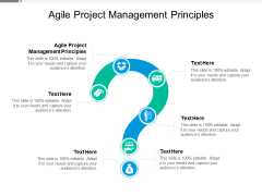 Agile Project Management Principles Ppt PowerPoint Presentation Infographic Template Example Cpb