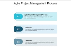 Agile Project Management Process Ppt PowerPoint Presentation Layouts Display Cpb