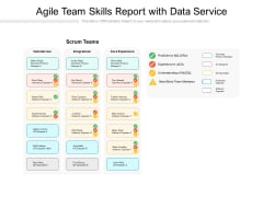 Agile Team Skills Report With Data Service Ppt PowerPoint Presentation Portfolio Ideas PDF