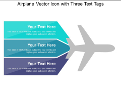 Airplane Vector Icon With Three Text Tags Ppt PowerPoint Presentation Gallery Rules PDF