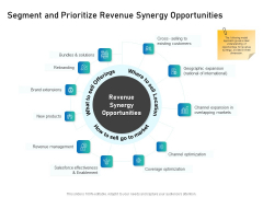 Alliance Evaluation Segment And Prioritize Revenue Synergy Opportunities Ppt Inspiration Designs Download PDF