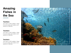 Amazing Fishes In The Sea Ppt Powerpoint Presentation Visual Aids Files