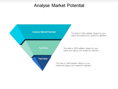 Analyse Market Potential Ppt PowerPoint Presentation Professional Picture Cpb