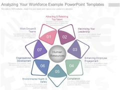Analyzing Your Workforce Example Powerpoint Templates