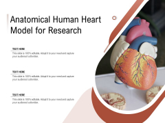 Anatomical Human Heart Model For Research Ppt PowerPoint Presentation Gallery Graphics Pictures PDF