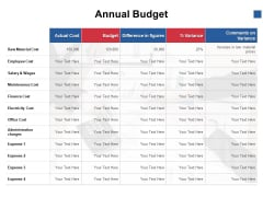 Annual Budget Finance Ppt PowerPoint Presentation File Background Image
