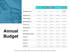 Annual Budget Ppt PowerPoint Presentation Layouts Graphics Pictures